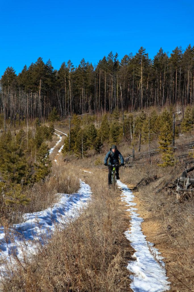 едем на велосипедах по зимнему лесу